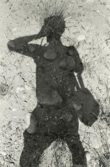 Self-Portraits 2013 2014 howard greenberg gallery