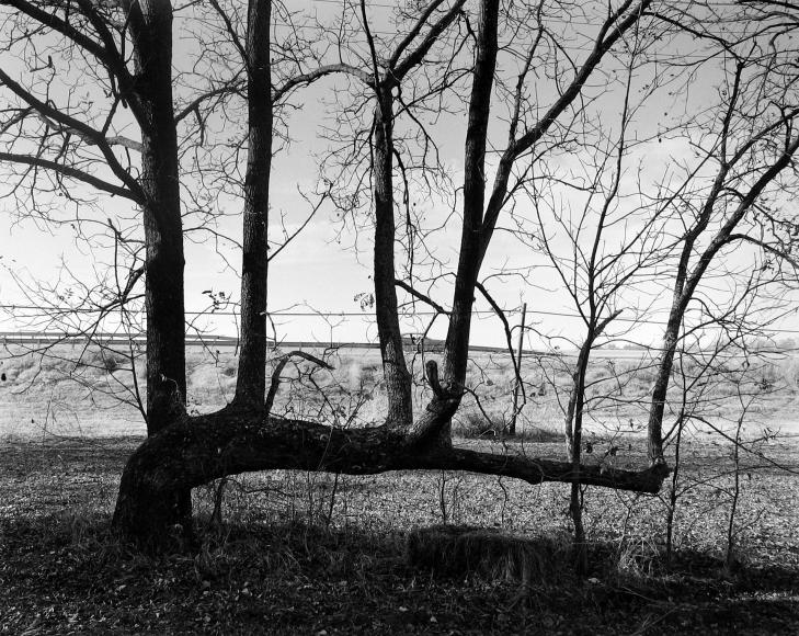 Frank Gohlke 2005 howard greenberg gallery
