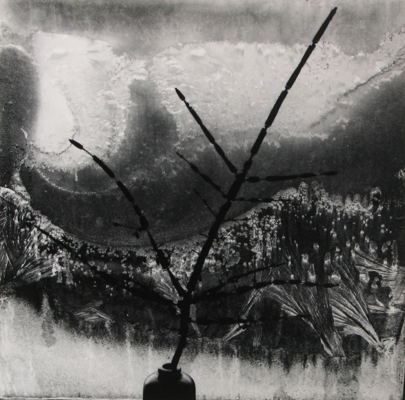 Minor White - Ritual Brach, 1958 - Howard Greenberg Gallery
