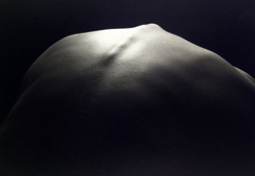 Kenro Izu - Still Life #449, 1993 - Howard Greenberg Gallery