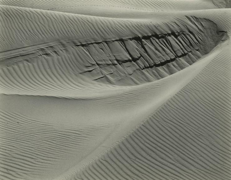 Edward Weston - Dunes at Oceano, 1936 - Howard Greenberg Gallery