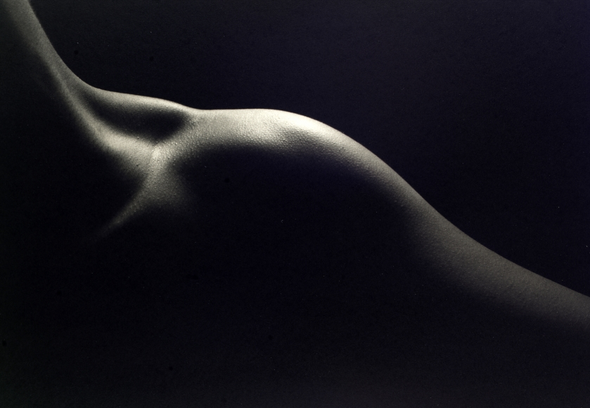 Kenro Izu - Still Life #773, 1998 - Howard Greenberg Gallery