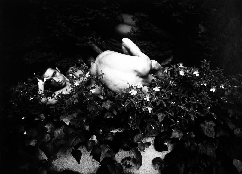 Eikoh Hosoe - Ordeal by Roses (Barakei) #15, 1961 - Howard Greenberg Gallery