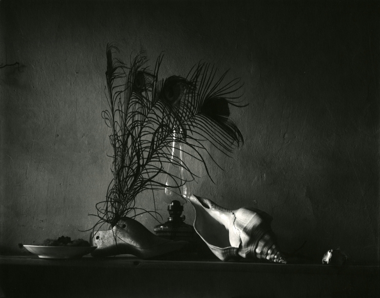Josef Sudek - Still Life in the Style of Caravaggio, First Variation, 1956 - Howard Greenberg Gallery