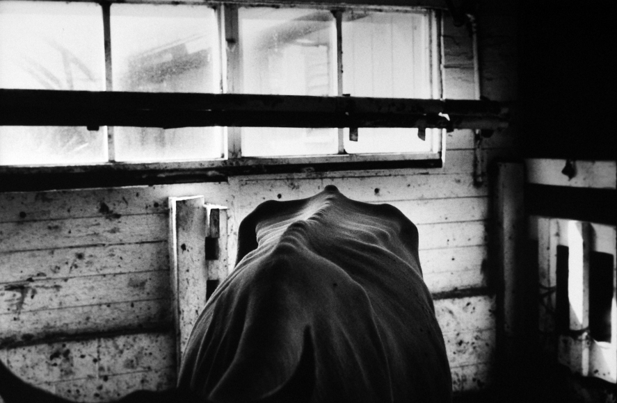 Jessica Lange: Photographs - Exhibitions - Howard ...