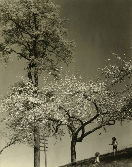 Edward Steichen - Singing Wires and Buzzing Bees, 1929 - Howard Greenberg Gallery