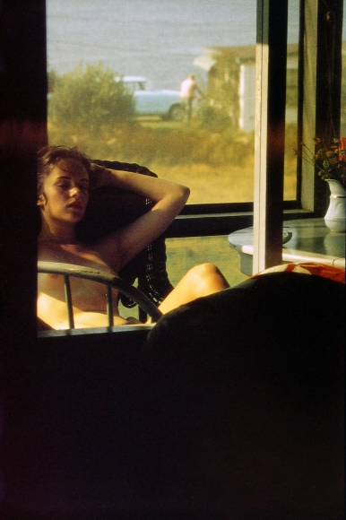 Saul Leiter - Lanesville, 1958 - Howard Greenberg Gallery