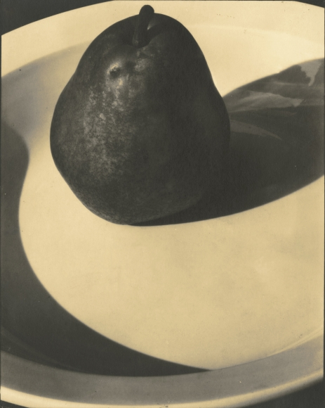 Edward Steichen: 1915-1923 2009 Howard Greenberg Gallery