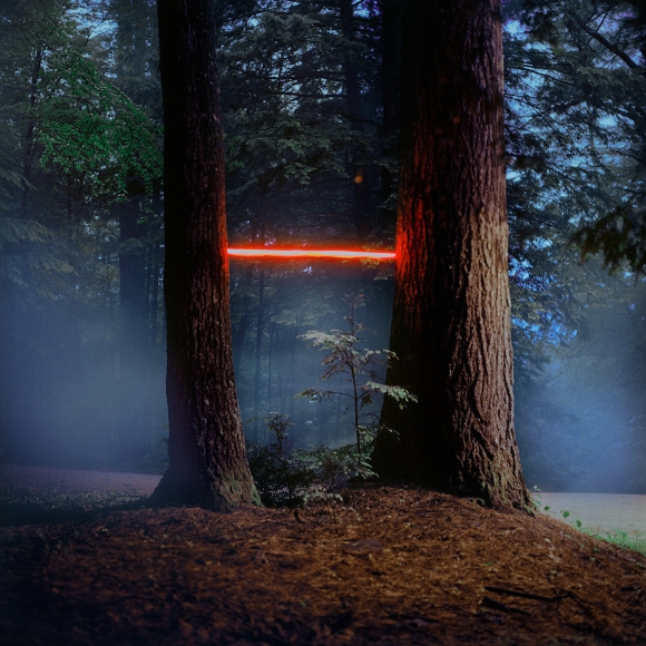 Barry Underwood, Scenes, Tree (MacDowell), 2013, Sous Les Etoiles Gallery