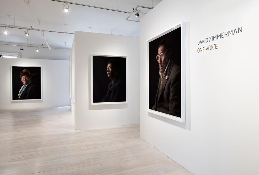 David Zimmerman, One Voice, 2013 Exhibition, Sous Les Etoiles Gallery