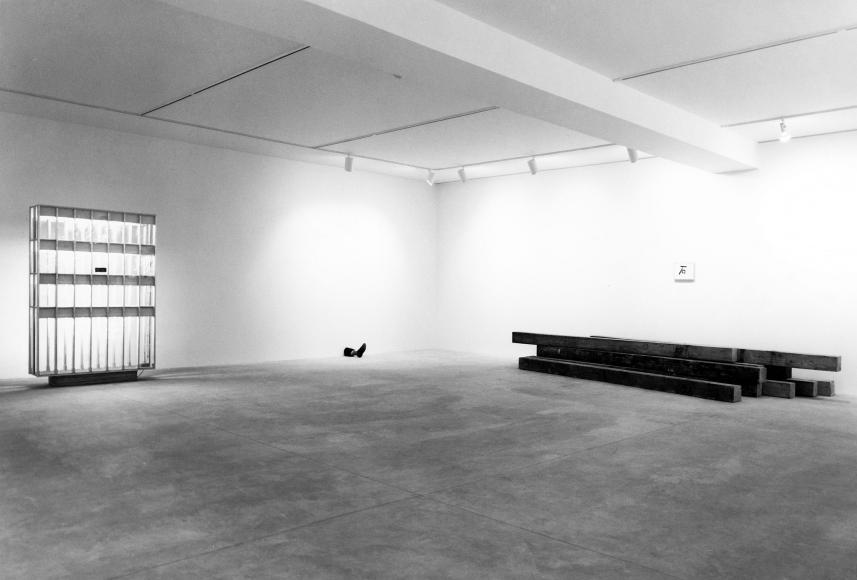 Günther Förg, Kenji Fujita, Robert Gober, Georg Herold,Jon Kessler,Liz Larner,Zoe Leonard, Installation view