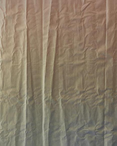 Tauba Auerbach Untitled (Fold), 2011