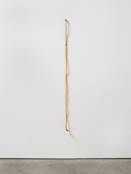 Lucia Nogueira Untitled, 1990