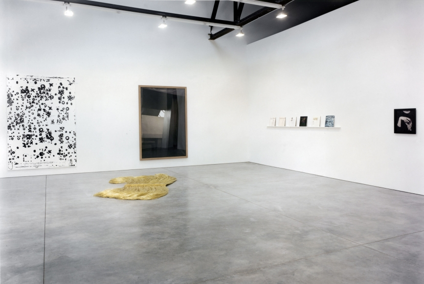 Inaugural Exhibition: Chelsea, Installation view