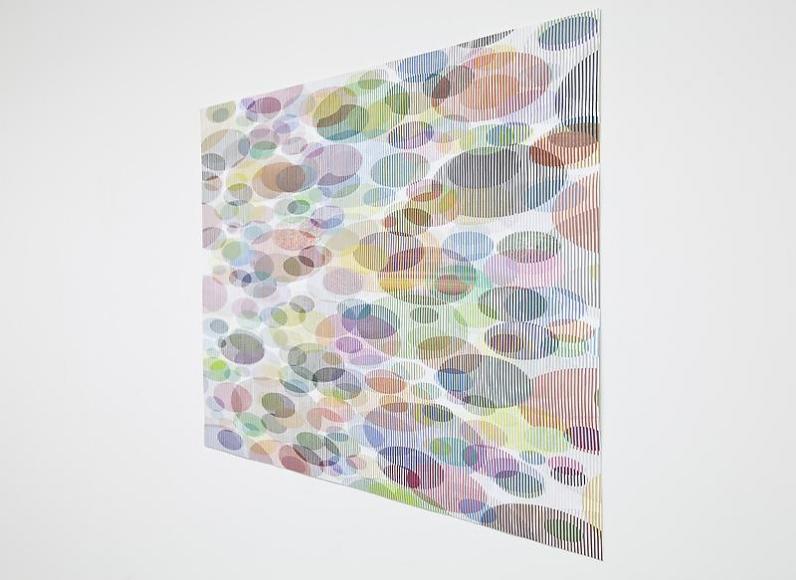 Tom Friedman, Untitled (lily pads), 2012