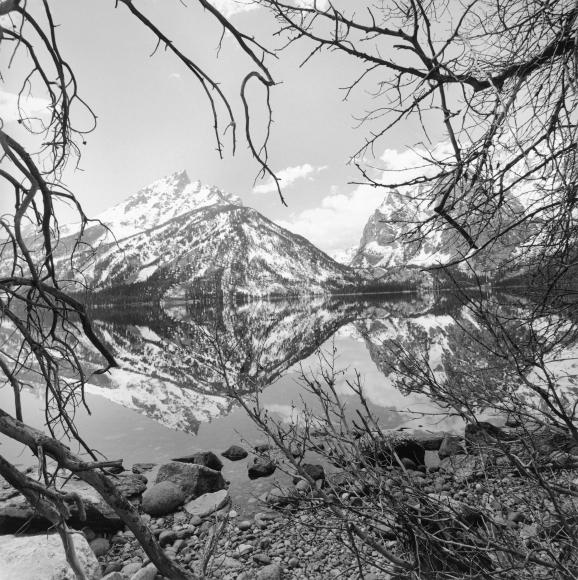 Lee Friedlander Grand Teton National Park, Wyoming, 1999 / Printed 2006