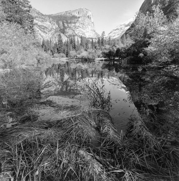 Lee Friedlander Yosemite National Park, California, 2004 / Printed 2020