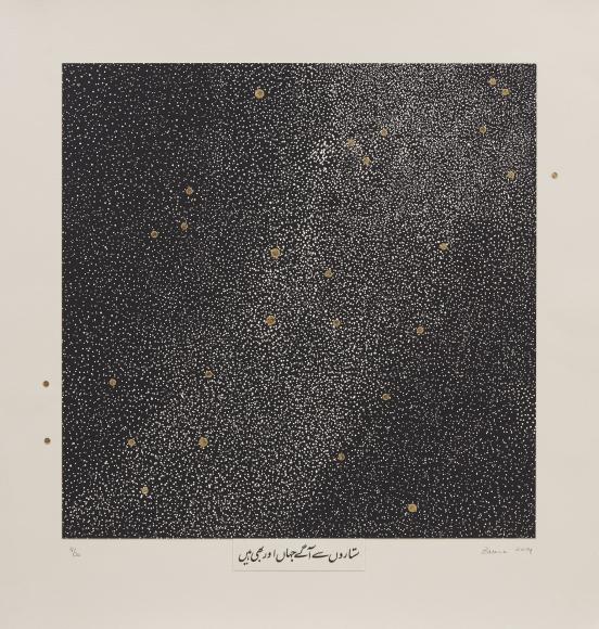 Zarina Beyond the Stars, 2014