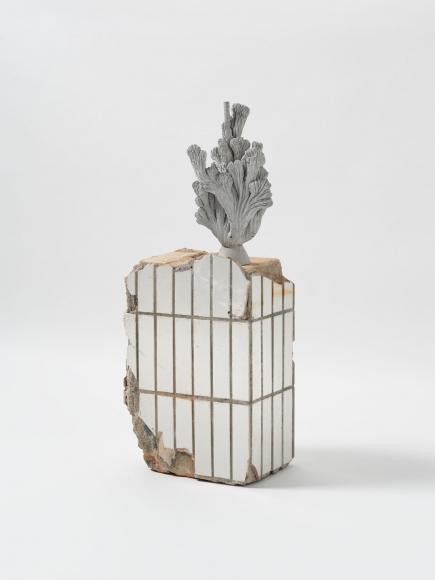 Zhang Ruyi, Matte Substance-1, 2019