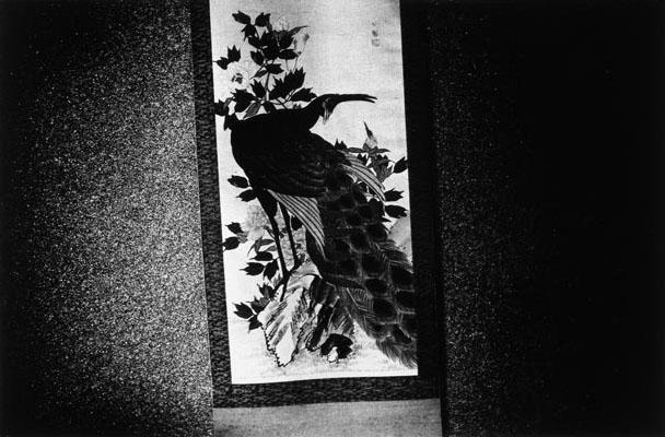 Daido Moriyama The Tales of Tono, 1976