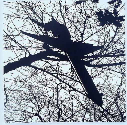 Carlos Amorales The Nightlife of a Shadow II, 2005