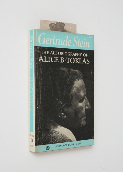 Steve Wolfe, Untitled (The Autobiography Of Alice B. Toklas), 2004-2005