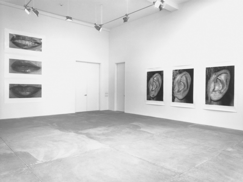 Sam Samore, Installation view
