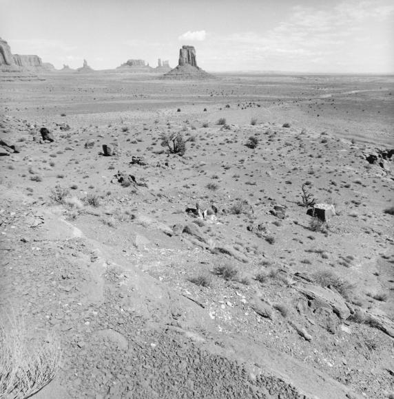 Lee Friedlander Monument Valley, Utah, 1998 / Printed ca. 2002