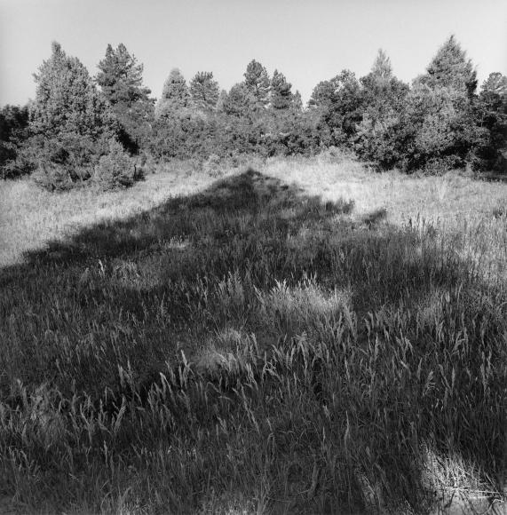 Lee Friedlander Colorado, 2003 / Printed 2004