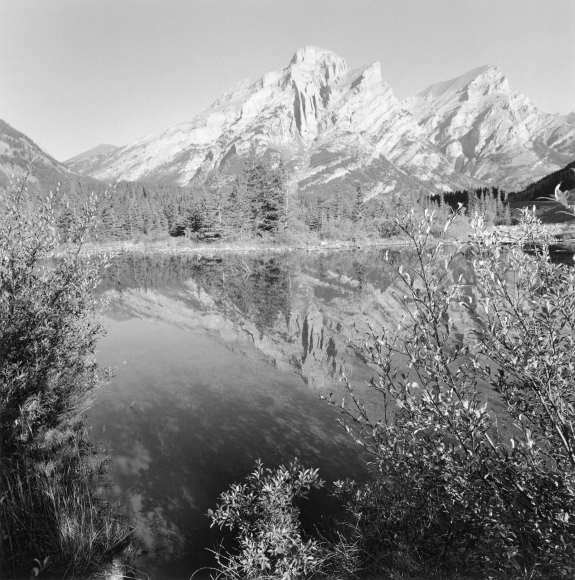 Lee Friedlander Jasper National Park, Alberta, Canada, 1995 / Printed 2004