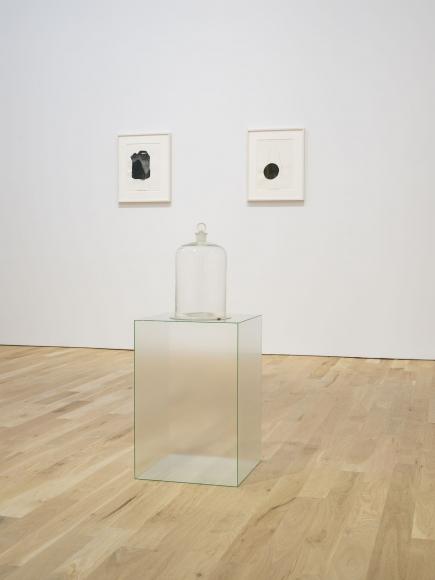 Lucia Nogueira, Installation view