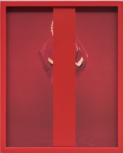 Elad Lassry, Untitled (Red), 2013