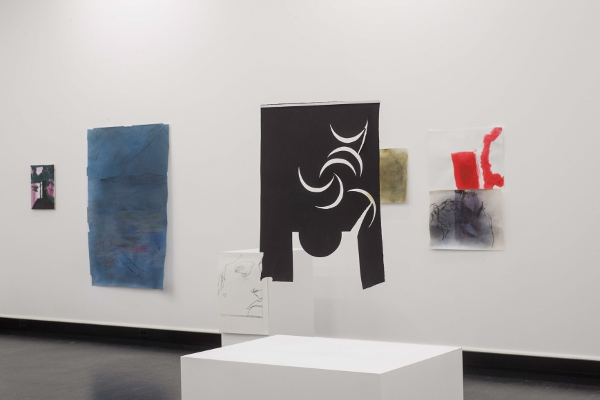 Nick Mauss, Installation view: Bergen Kunsthall, 2013