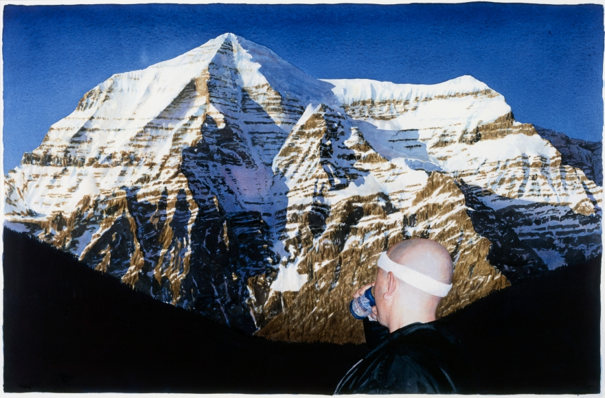 Tim Gardner, Untitled (S with Mt. Robson), 2002