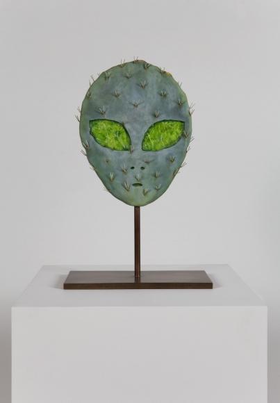 Matt Johnson, Alien Cactus, 2015