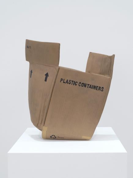 Matt Johnson, Untitled (Plastic Containers Box),  2016