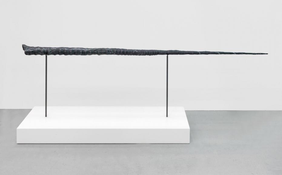 Alicja Kwade, Entwicklung 2048 (snail speed), 2016