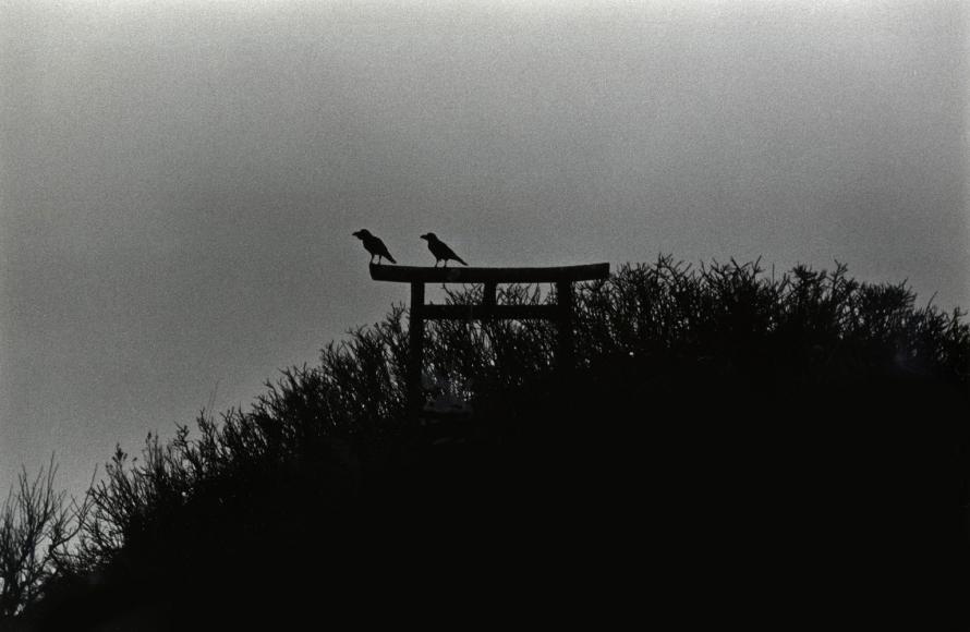 Masahisa Fukase Sakotan Peninsula, 1977