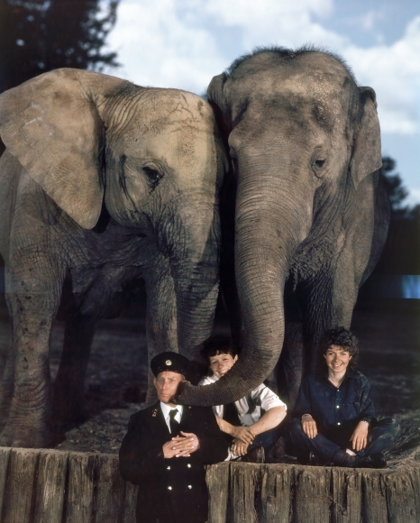 Neal Slavin Elephant Keepers with Katie & Kumara, Whipsnade Park Zoo, Dunstable, Bedfordshire, UK, 1984