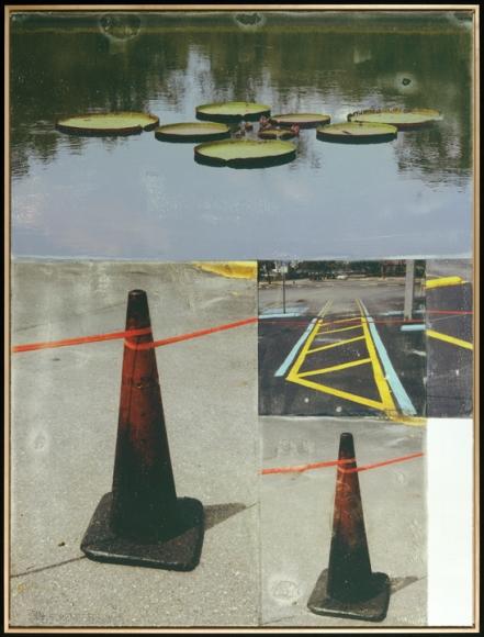 Robert Rauschenberg, Lotus Bed I, Inkjet print