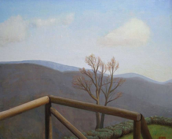 La Fortezza Railing, Tree and Olive Tree Smoke, 2015