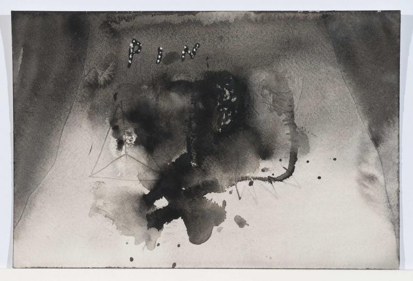 David Lynch, Pin