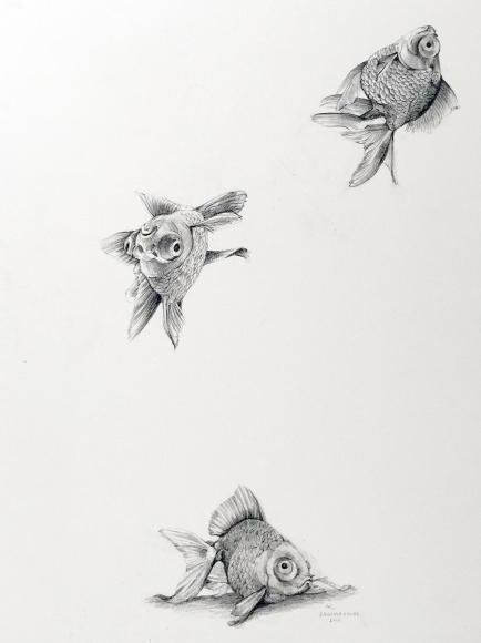 Adonna Khare (b. 1980) Falling Goldfish, 2015