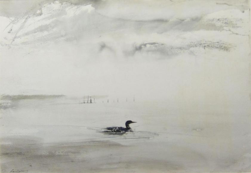 Andrew Wyeth - Loon, 1954