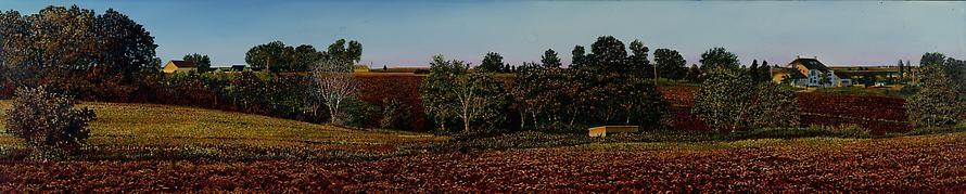 Illinois Landscape #133, 1994