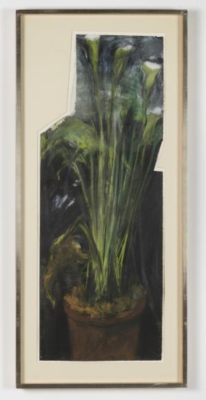 Calla Lillies No. 3, 1991