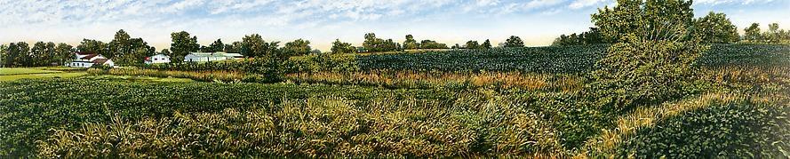 Illinois Landscape #158, 1999
