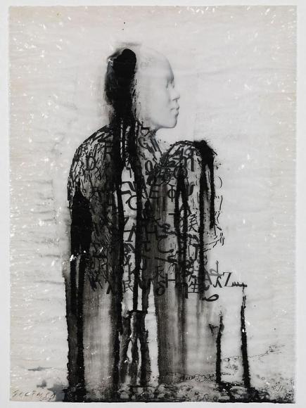 Veiled Shadow IX, 2011
