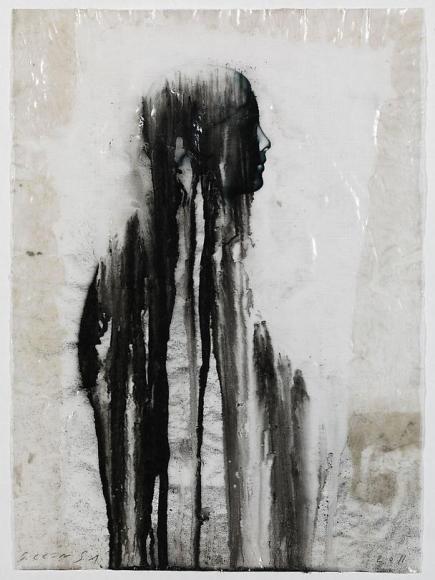 Veiled Shadow XXII, 2011