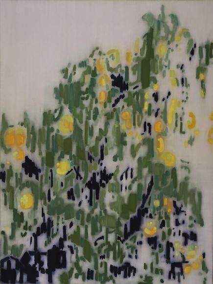 477 (green oranges), 2005